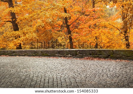 Autumn landscape with ancient road and beautiful colored trees - stock photo