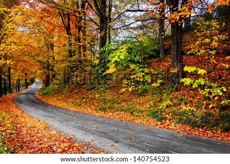 Autumn landscape with bright colorful orange and red trees and leaves along a winding country road - stock photo