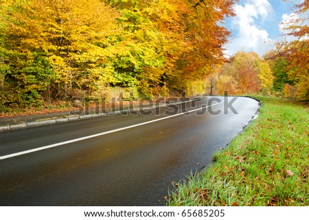 Autumn landscape with road - stock photo
