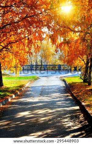 Autumn Landscape with the Trees in the Park - stock photo