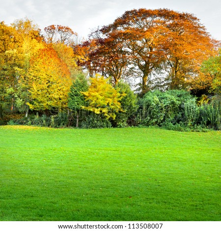 Autumn landscape with trees and lawn in the foreground. The autumn forest. - stock photo