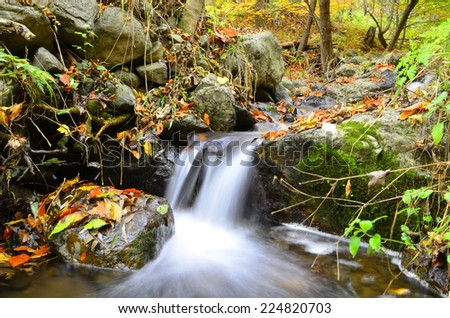 Autumn landscape with trees and river - stock photo