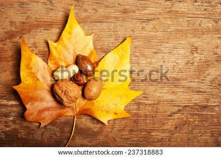 autumn leaf with various kinds of nuts over wood background with copy space - stock photo
