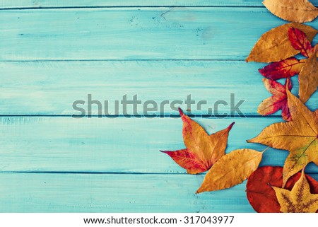 Autumn leafs over blue wood - stock photo