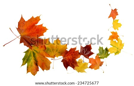Autumn leaves during blizzard isolated on white background - stock photo