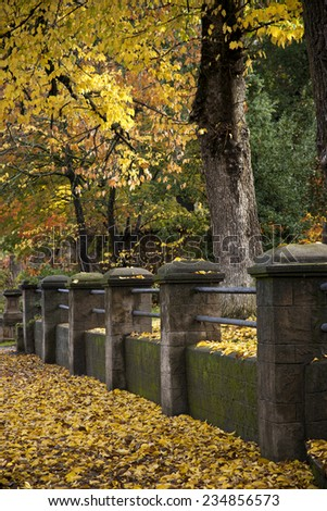 Autumn leaves have covered the sidewalk along an old stone fence - stock photo