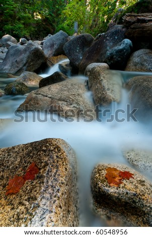 autumn leaves on a rock with river flowing - stock photo