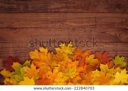 Autumn leaves on a wooden table. - stock photo