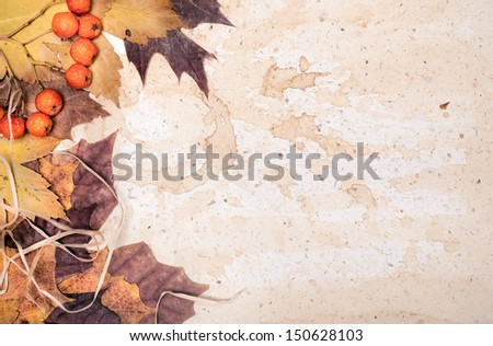 Autumn leaves on textured paper with coffee stains - stock photo