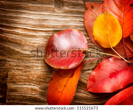 Autumn Leaves over wooden background.Fall. Wood Background With copy space - stock photo