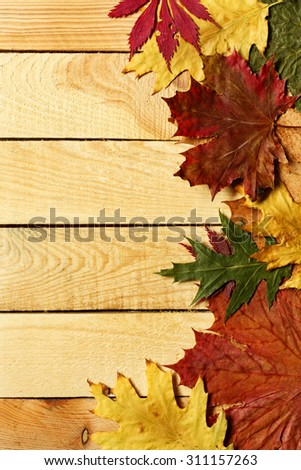 Autumn leaves over wooden background with copy space/ Autumn leaves background - stock photo