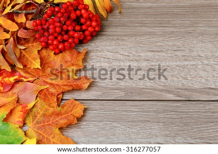 Autumn leaves over wooden background with copy space. Focus on berries - stock photo