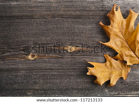 Autumn Leaves over wooden board background with copy space - stock photo