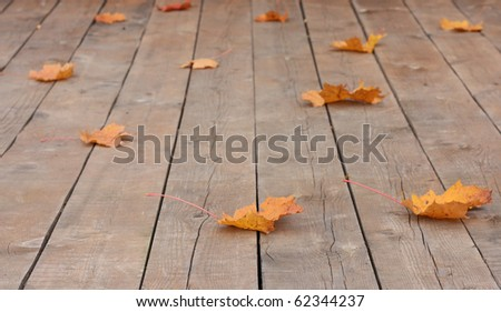 Autumn leaves over wooden boards floor. - stock photo