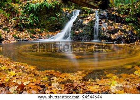 Autumn leaves swirl in a small pool at the base of Rustic Falls in Moran State Park, Washington - stock photo