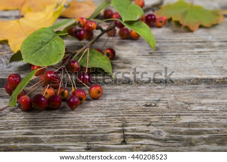 Autumn maple leaves and apples on an old wooden background - stock photo
