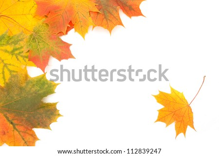 Autumn maple leaves frame - stock photo