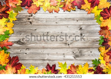 Autumn maple leaves over old wooden background with copy space - stock photo
