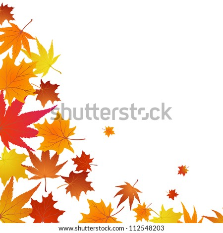 Autumn maples falling leaves background - stock photo