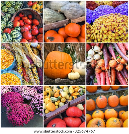 Autumn market. Vegetables and flowers, collage of nine photos. - stock photo