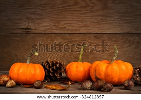 Autumn mini pumpkins with leaves and nuts on a rustic old wood background - stock photo