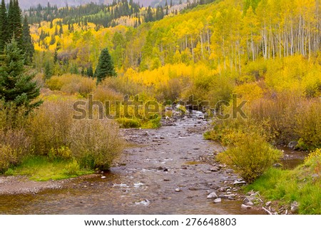 Autumn mountain  landscape with forest and creek on a cloudy day. Colorado, USA - stock photo