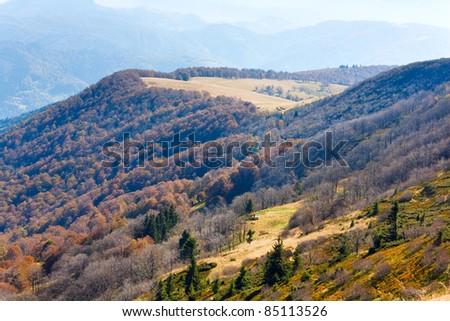 Autumn mountains  with a stark bare trees on forest mountainside edge (Carpathian, Ukraine). - stock photo
