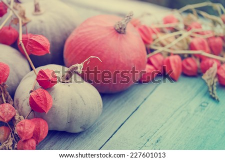 Autumn nature concept. Fall pumpkins and apples on wooden rustic table.  - stock photo