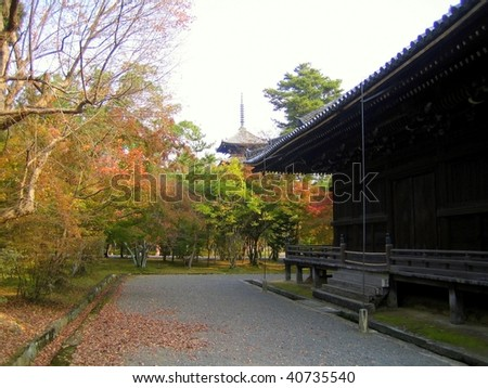 Autumn nature, Ninnaji temple gardens in Kyoto, Japan - stock photo