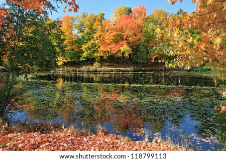Autumn on the East Coast - stock photo