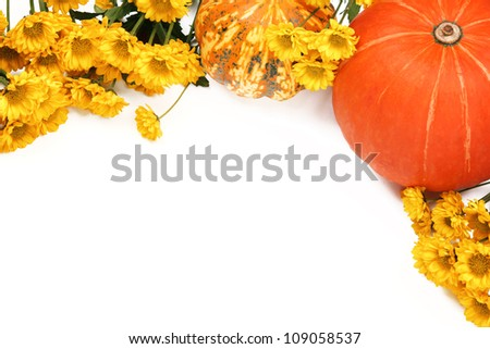 Autumn or Thanksgiving Border,Pumpkins and yellow flowers on white background. - stock photo