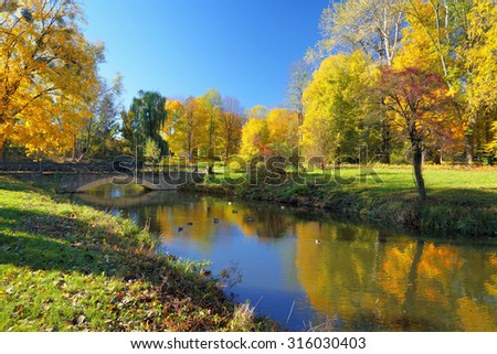 Autumn park with colorful trees reflected in river. Some ducks on the water. Tranquil scenery in sunny day - stock photo