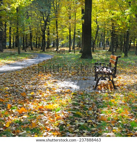 autumn park with paths and benches - stock photo