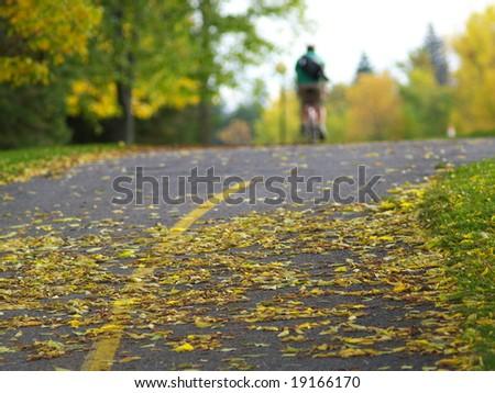 autumn path - stock photo