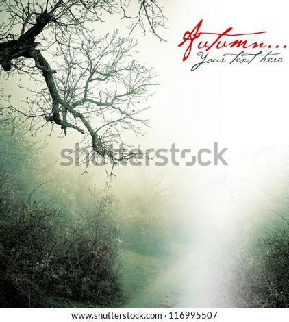 Autumn poster with misty forest - stock photo