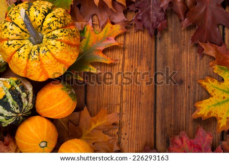 autumn pumpkins surrounded by leaves - stock photo