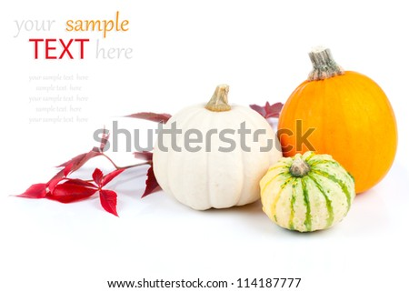 Autumn pumpkins with red leaves, isolated on the white background - stock photo