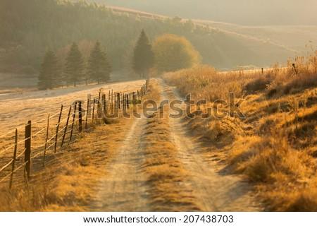autumn rural path in the mountain - stock photo