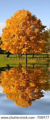 Autumn's Reflections - stock photo