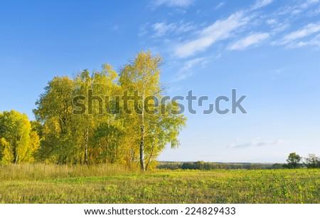 Autumn scene. Kaluga region, Russia - stock photo