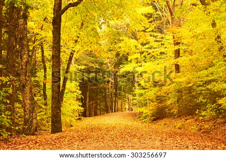 Autumn scene landscape somewhere in New England - stock photo