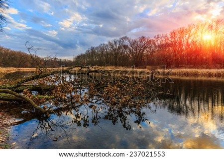 Autumn scene on old lake in forest at evening time - stock photo