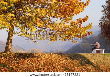 Autumn Scenery - stock photo