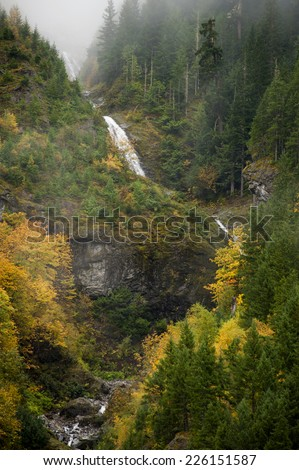Autumn Scenery in the North Cascade Mountains. Big leaf maple trees line a small stream as it cascades down the mountainside in western Washington state. - stock photo