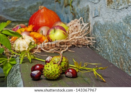 autumn still life - stock photo