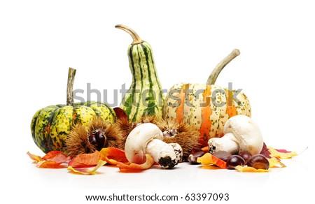Autumn still life, isolated on white - stock photo