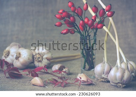 autumn still life of garlic and rosehips - stock photo