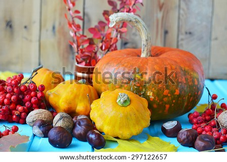 Autumn still life - pumpkins, squash, chestnuts, walnuts, ash on a wooden background - stock photo
