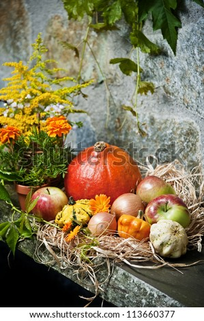 autumn still life with halloween pumpkins - stock photo