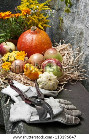 autumn still life with halloween pumpkins in the garden - stock photo